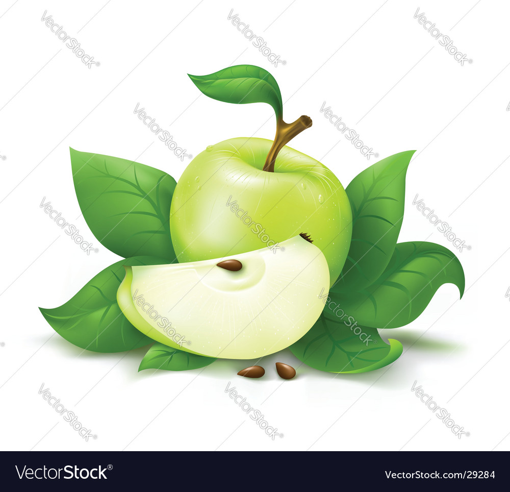 Apple with leafs vector | Price: 1 Credit (USD $1)