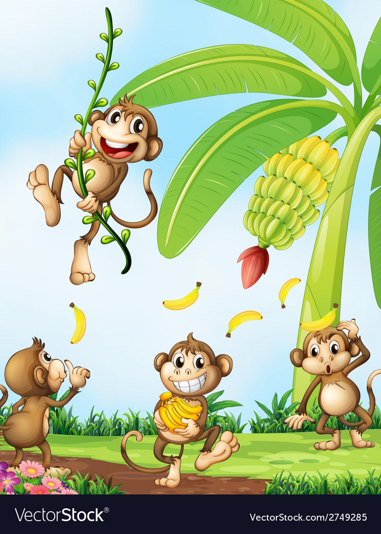 Playful monkeys near the banana plant vector | Price: 1 Credit (USD $1)
