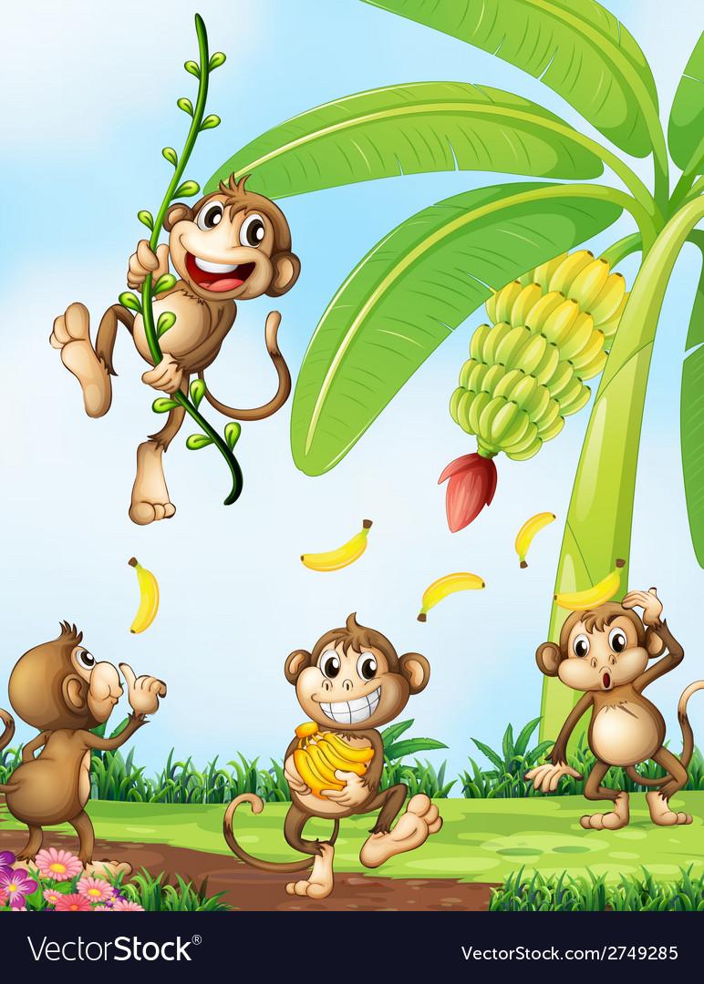 Playful monkeys near the banana plant vector | Price: 1 Credit (USD $1)