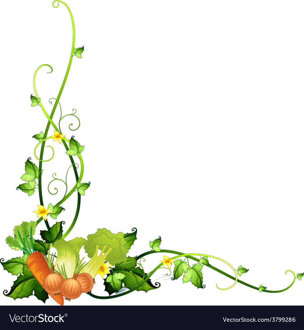 A vegetable border template vector | Price: 1 Credit (USD $1)
