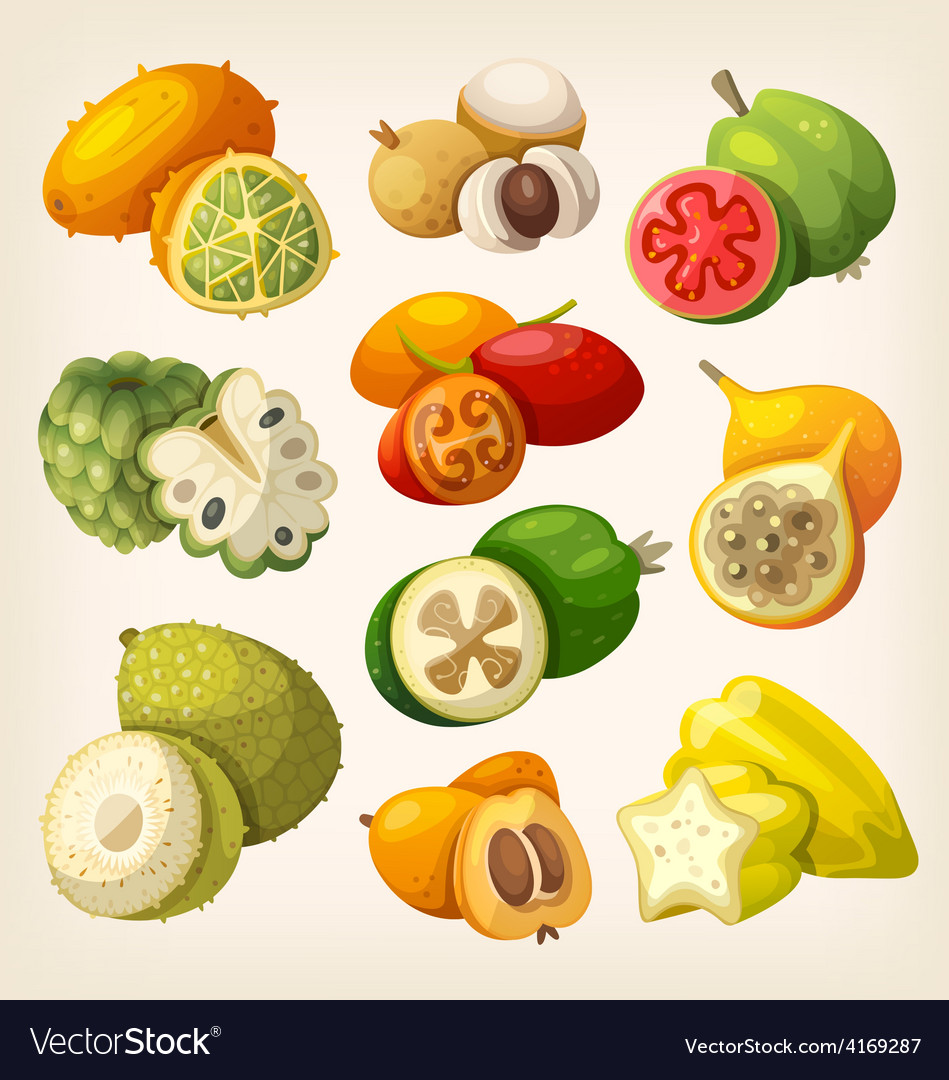 Exotic tropical fruit vector | Price: 3 Credit (USD $3)