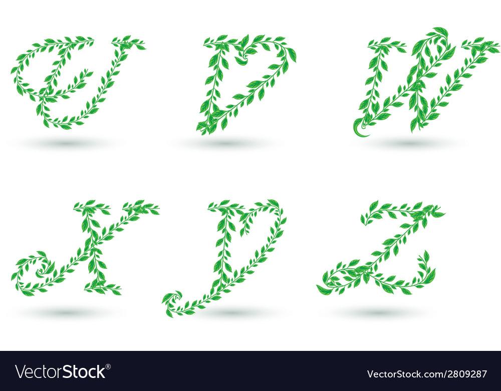 Leaf text u z vector | Price: 1 Credit (USD $1)