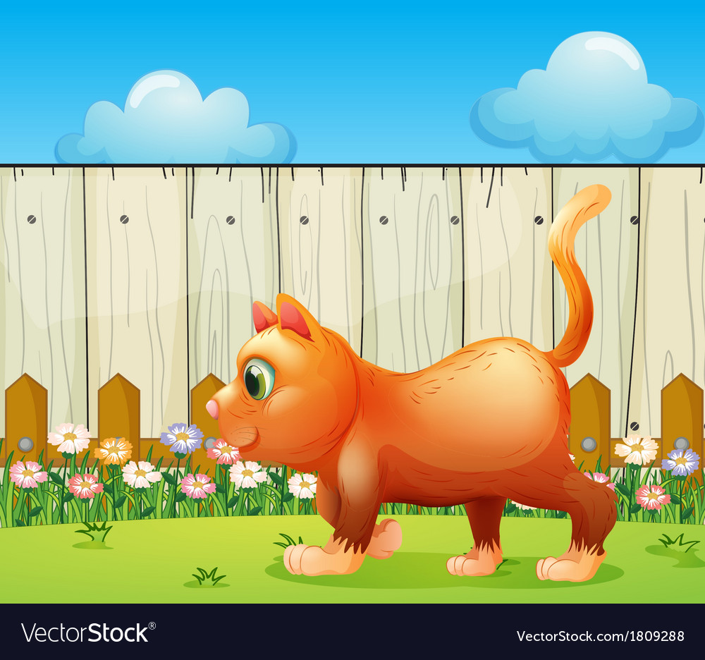 A fat cat at the backyard vector | Price: 1 Credit (USD $1)