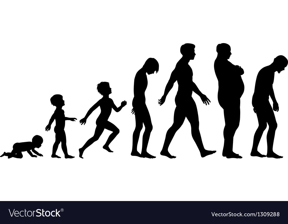 Ages of man vector | Price: 1 Credit (USD $1)