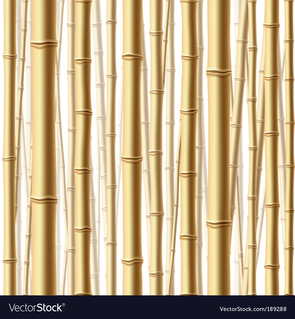 Bamboo forest background vector | Price: 1 Credit (USD $1)