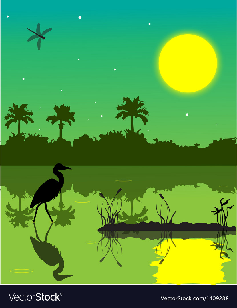 Everglades 2 vector | Price: 1 Credit (USD $1)