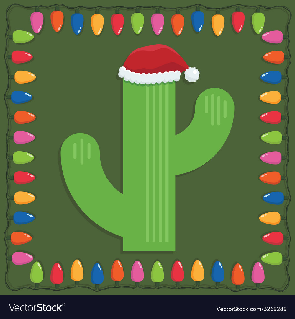 Christmas cactus vector | Price: 1 Credit (USD $1)