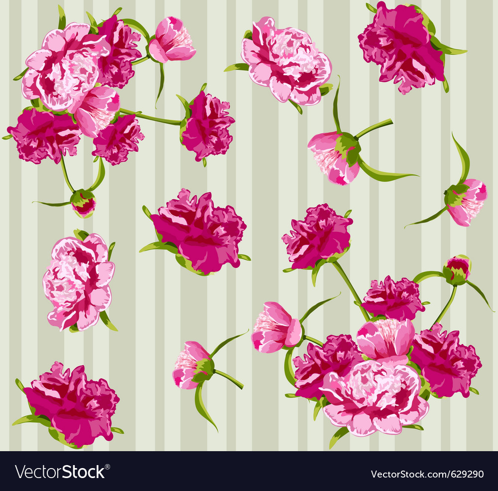 Peonies seamless background vector | Price: 1 Credit (USD $1)