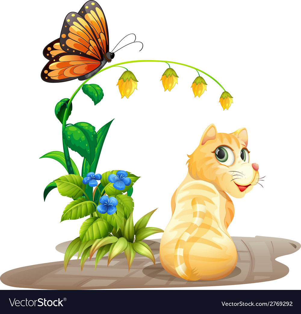 Cat and butterfly vector | Price: 1 Credit (USD $1)
