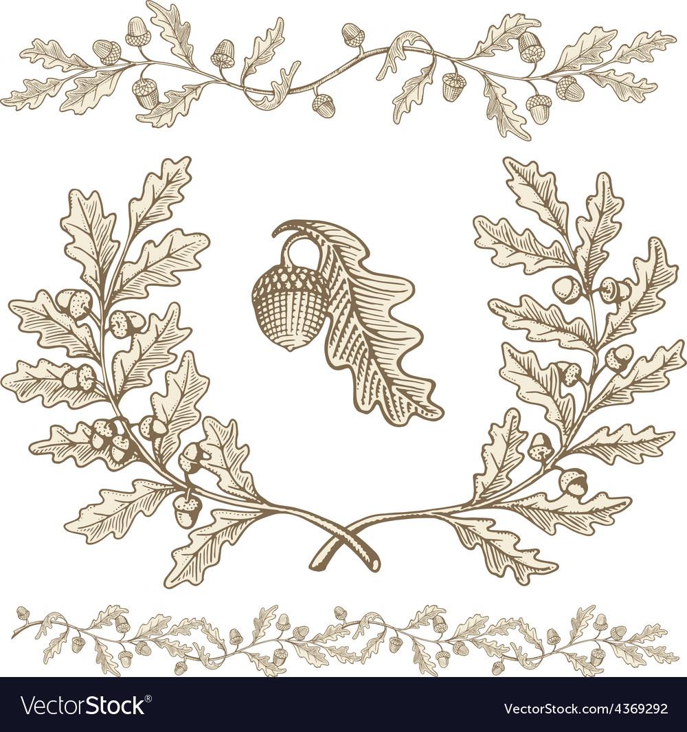 Oak wreath vector