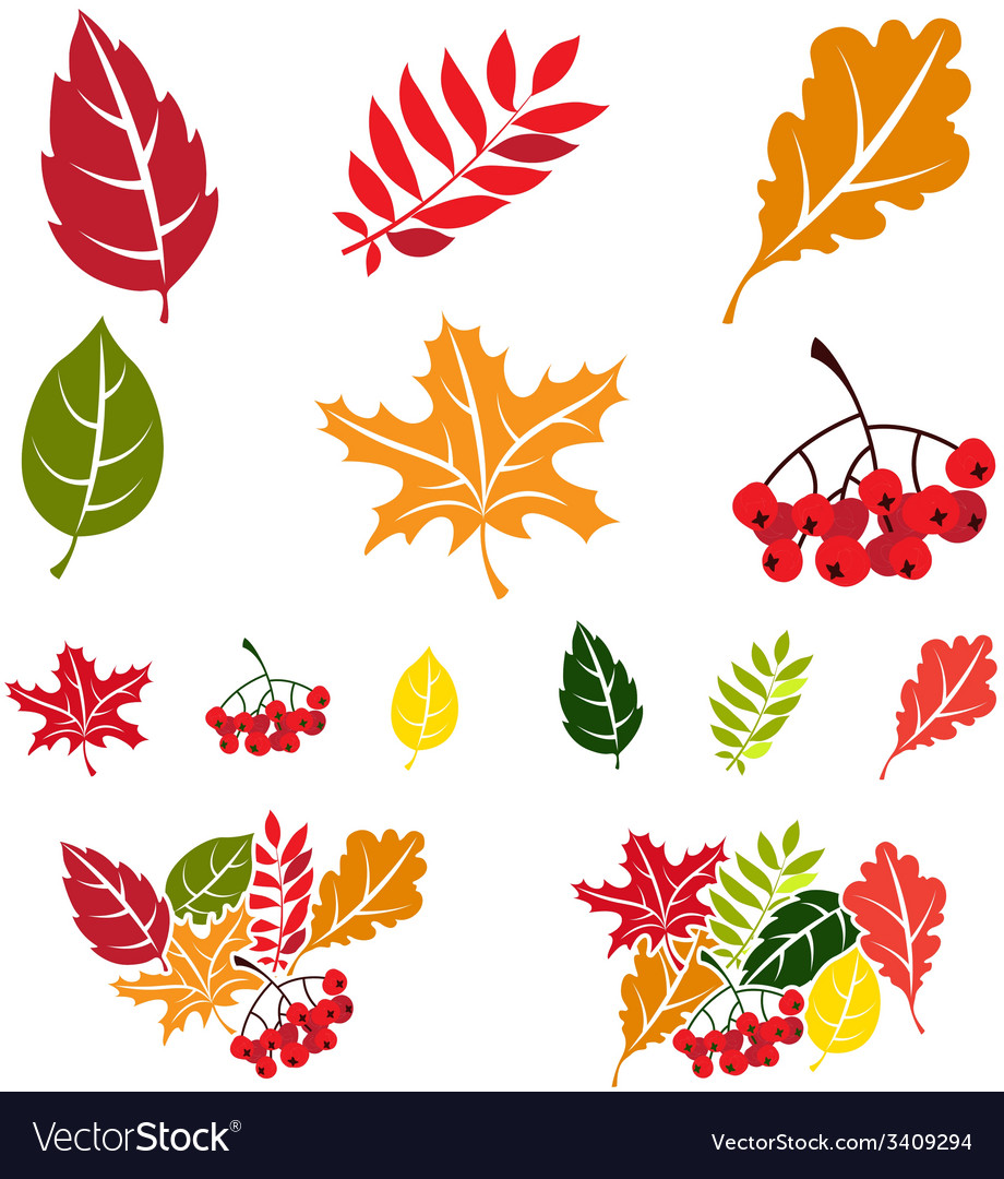 Autumn leaves set flat style vector | Price: 1 Credit (USD $1)