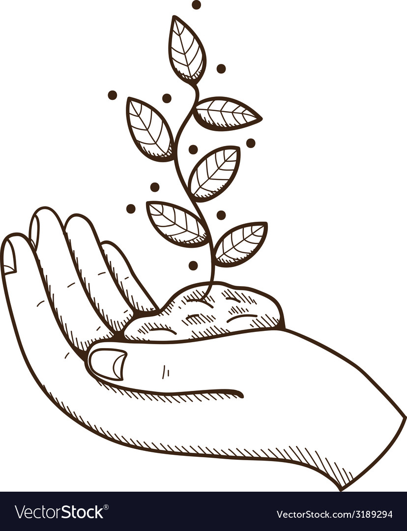 Human hand with leaves vector | Price: 1 Credit (USD $1)