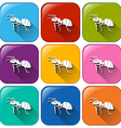 Ant icons vector