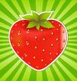 Strawberry and sunburst vector