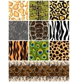 Set seamless patterns animals vector