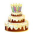 Birthday cake and candle vector
