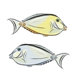 Fish sketch for your design vector