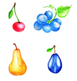 Set of watercolor fruits vector