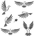 Flight of dove vector
