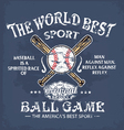 Baseball world sport vector