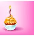 Cake birthday party vector