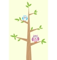 Two owls on the tree vector