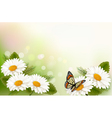 Summer background with yellow beautiful flowers vector