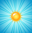 Big shining summer sun vector
