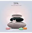 Colorful of spa with flower candles and sto vector