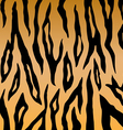 Tiger print pattern vector