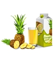 Pineapple juice set vector