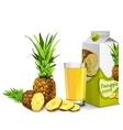 Pineapple juice set vector