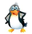 A penguin vector