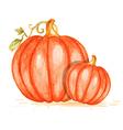 Watercolor orange pumpkins vector