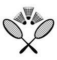 Equipment badminton vector