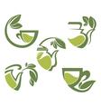 Warm herbal tea vector