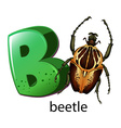 A letter b for beetle vector