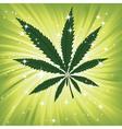 Green hemp floral inspiration background vector