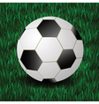 Football on a grass background vector