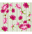 Peonies seamless background vector