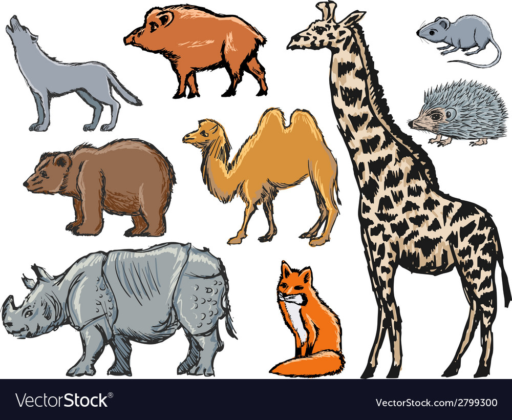 Mammals vector | Price: 1 Credit (USD $1)