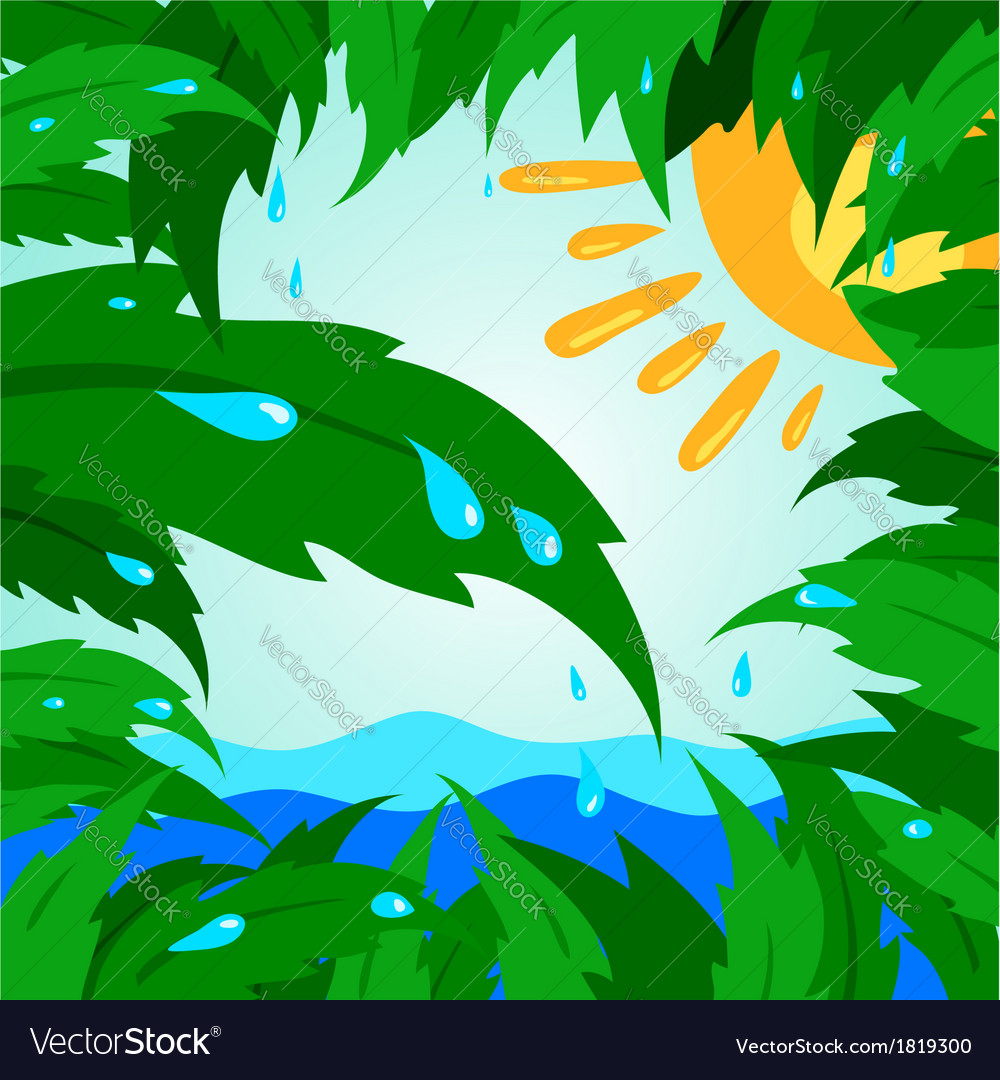 Tropical leaf leaves tree green sun drops rain vector | Price: 1 Credit (USD $1)