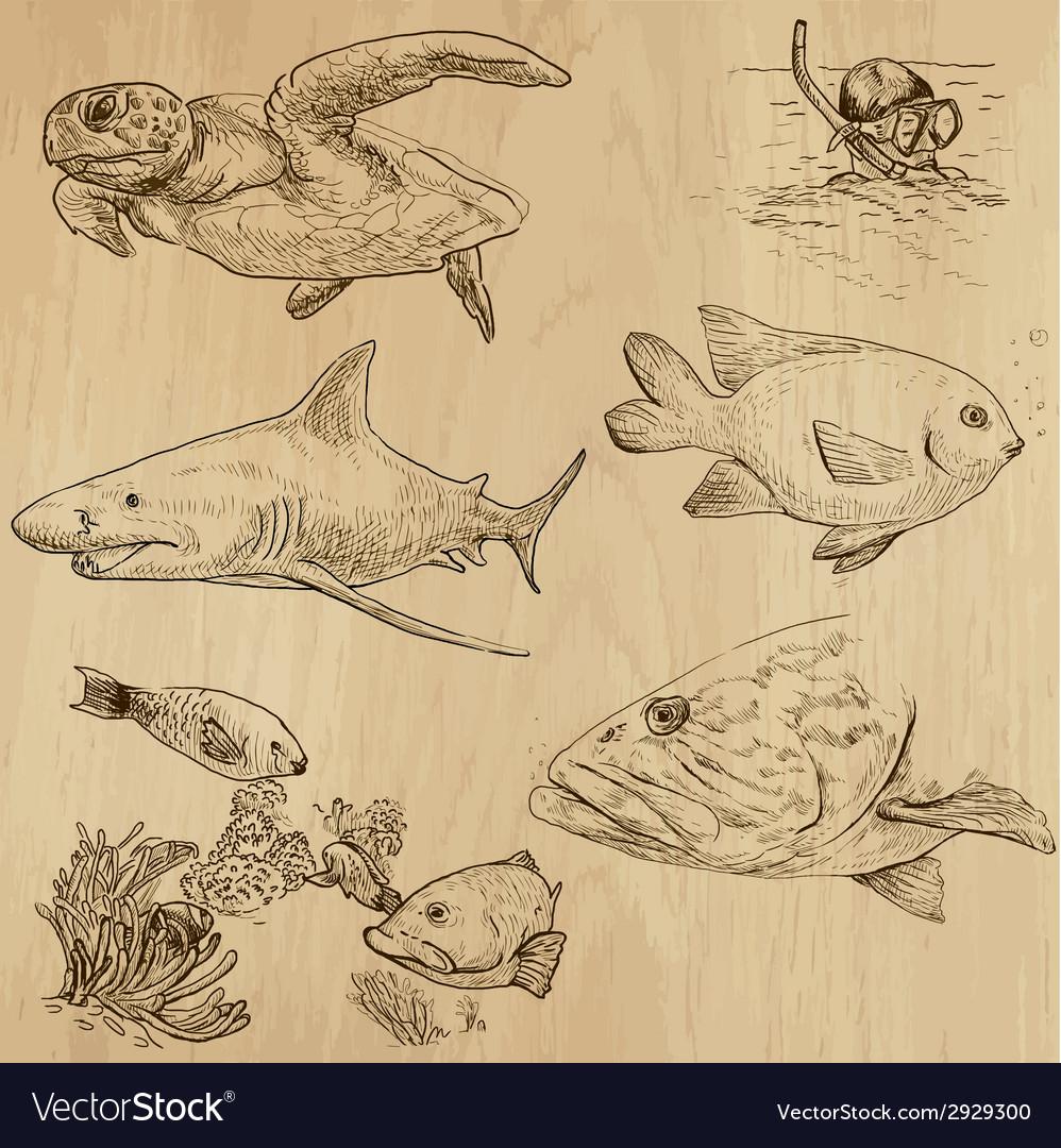 Underwater sea life set no1 - hand drawn vector | Price: 1 Credit (USD $1)