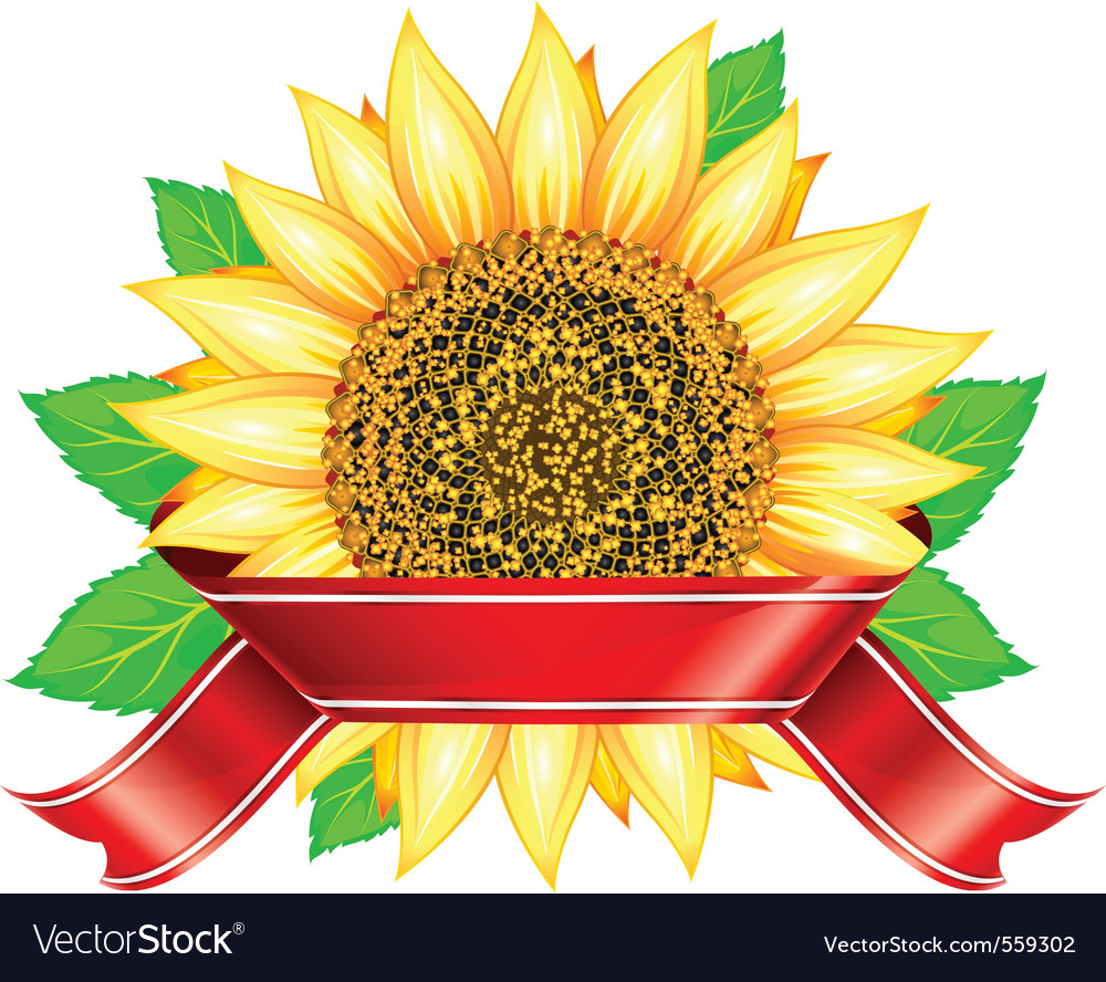 Label design with sunflower leafs and red ribbon vector | Price: 1 Credit (USD $1)