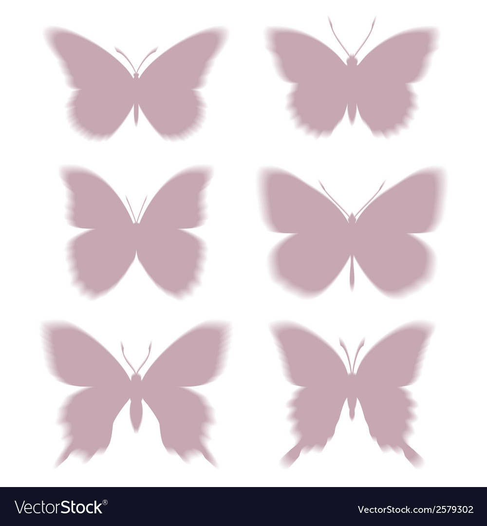 Shadows of butterflies eps10 vector | Price: 1 Credit (USD $1)