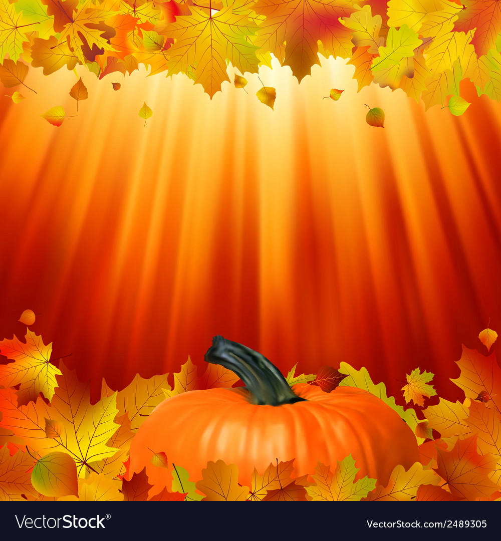 Pumpkins and leaves in the sun eps 8 vector | Price: 1 Credit (USD $1)