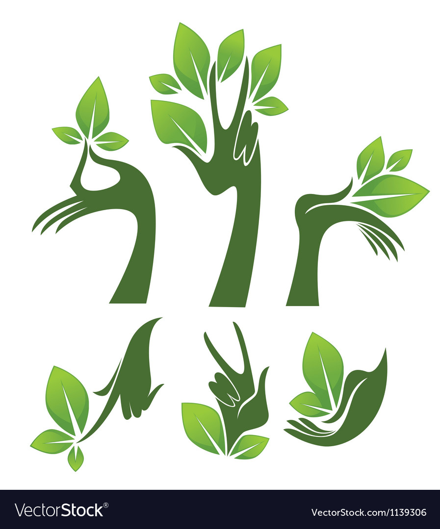 Green hands eco and beauty symbols vector   Price: 1 Credit (USD $1)