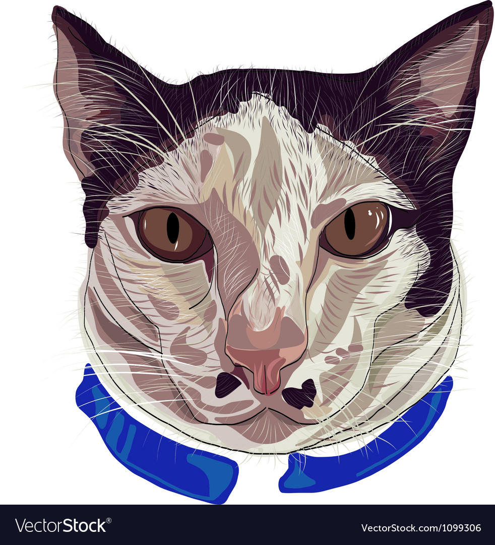 Hand drawn kitty face 2 dots vector | Price: 1 Credit (USD $1)