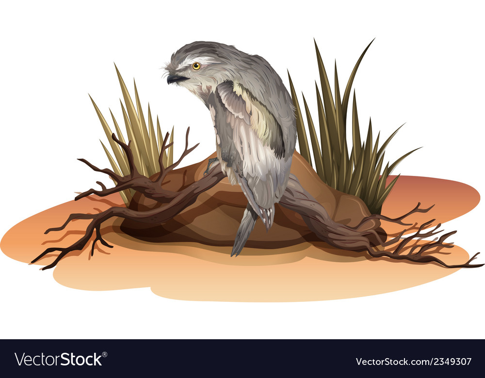 A bird above the branch of a tree near the rock vector | Price: 1 Credit (USD $1)