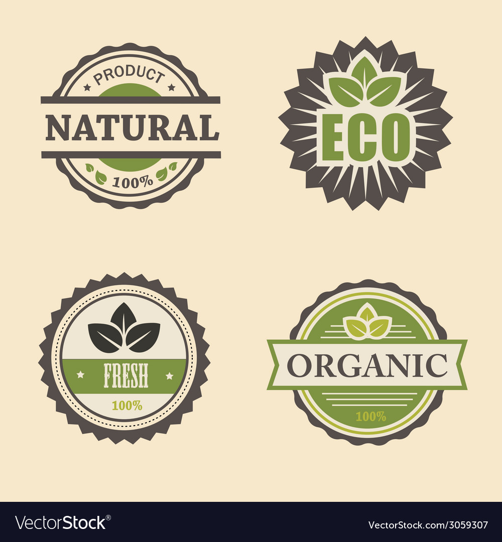 Natural eco design elements set vector | Price: 1 Credit (USD $1)